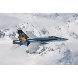 1/72 F/A-18 HORNET TIGER MEET 2016 - ITA1394